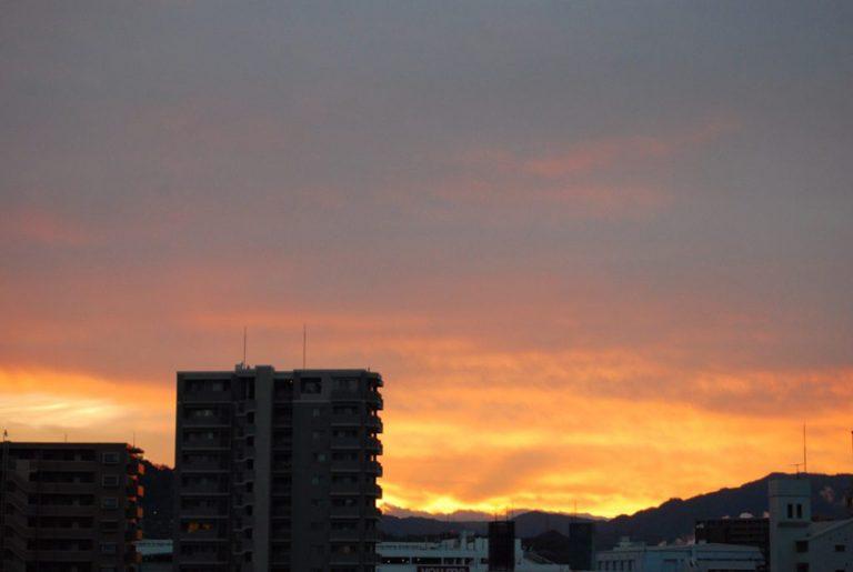 太陽より早起き;